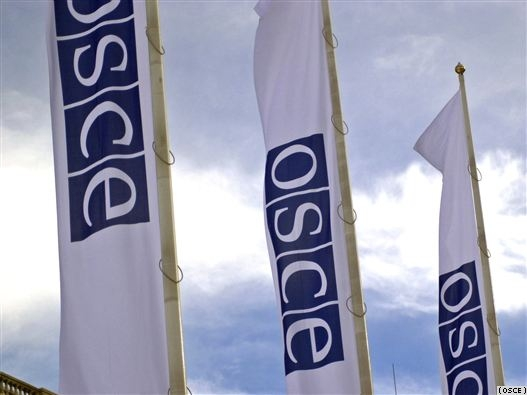 The topic of the fight against corruption is quite relevant and relevant to the OSCE PA