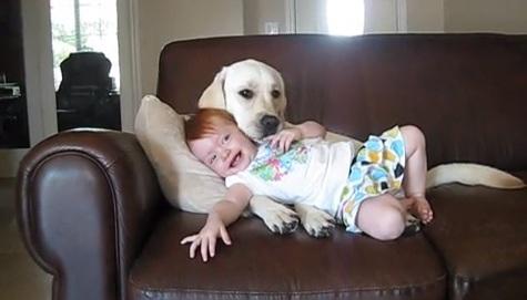 Իմ լավագույն ընկերը շնիկս է. հուզիչ տեսանյութ