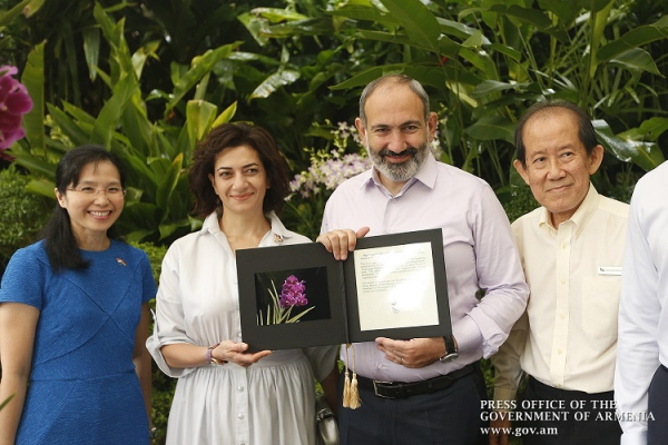 New species of Singapore orchids named after Nikol Pashinyan and Anna Hakobyan